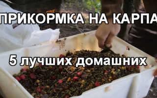 Домашняя прикормка для рыбы,пропорции, рецепты, секреты Видео