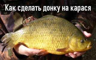 Донка на карася сулит богатый улов