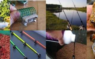 Основы фидерной ловли — пособие для начинающих