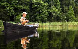 Платная рыбалка в Подмосковье без нормы вылова, рыболовные клубы