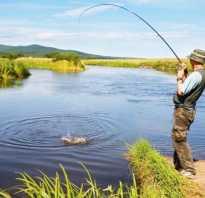 Как засолить рыбу на рыбалке летом