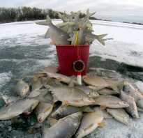 Рыбалка на карася в красноярске видео