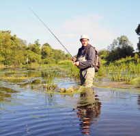 ТОП-10 водоемов для отличной зимней рыбалки в Подмосковье Путеводитель по Московской области