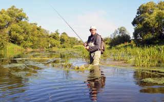Пруды в московской области для рыбалки