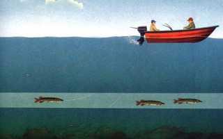 Как правильно посадить дорожку рыболовную