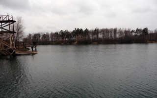 Рыбалка в Коняшино рядом с Гжелью проживание без нормы вылова