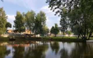 Рыбалка в Щелковском районе 2017