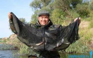 Ловля леща на Ахтубе — Рыбалка на Ахтубе с комфортом