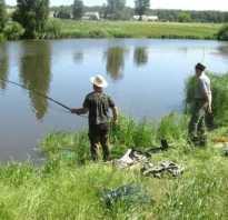 Секреты успешной рыбалки круглый год